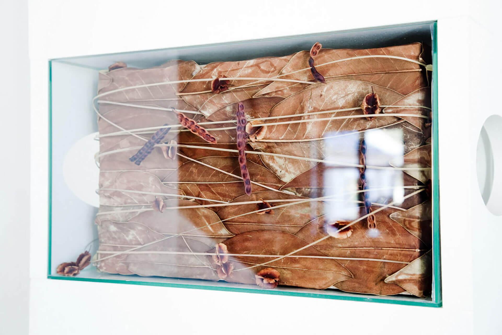Wandelement aus Blättern hinter Glas